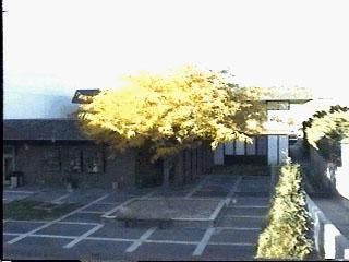 BMCC Courtyard October 26, 1998 3:15pm