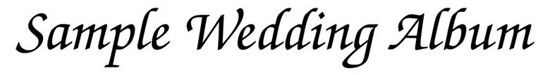 Wedding Album Banner